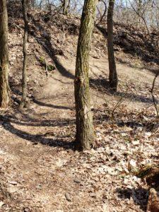 Bass Lake Rec Area bike Trail- 5 Great bike trails around Grand Haven, Michigan