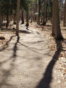 Pigeon Creek Park Bike Trail