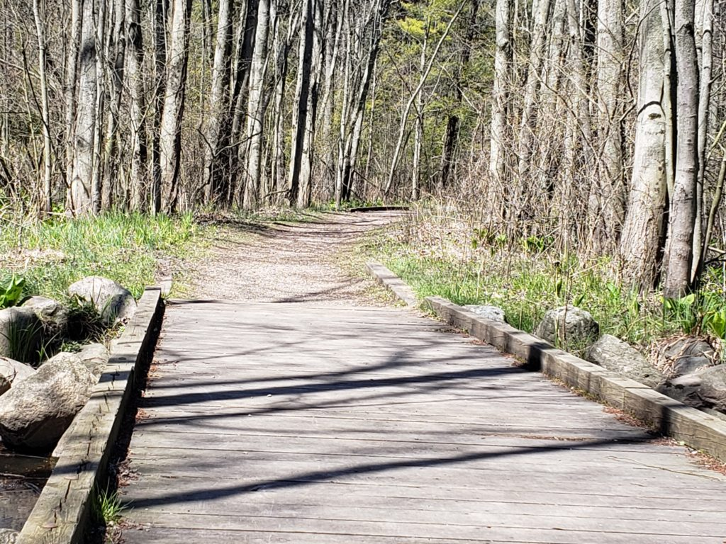 Pigeon Creek Park Bike Trail boardwalk